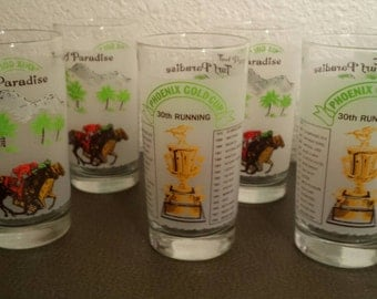 Frosted horse racing bar glasses- collectible sports drinkware/barware-RARE- set of 6-1980's great gift idea treasury featured item!