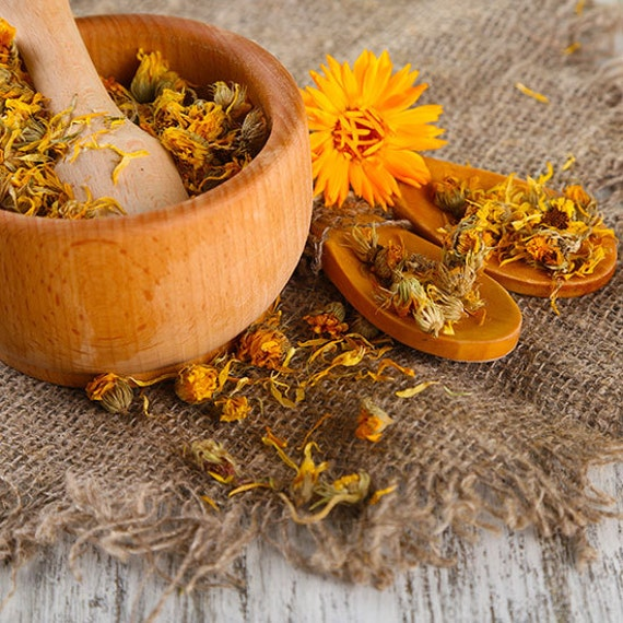 how to grow marigold from dried flowers
