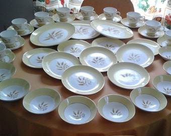 50 Pieces 50s Dinnerware, Autumn Gold, Homer Laughlin for Century Service Corp.