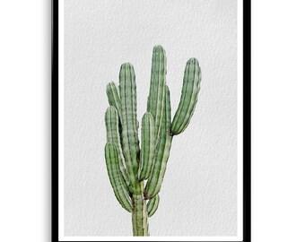 Cactus Print,Cactus Printable, Cactus, Cactus Print, Cactus Poster, Desert Decor, Desert Print, Desert Art,Cacti Print,Cactus Decor