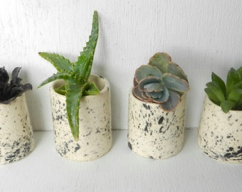 ceramic planter - succulent planter - small ceramic planter - b small ceramic pot - white ceramic planter