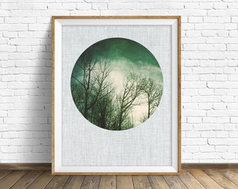 "nature photography, large art, large wall art, printable art, instant download printable art, nature prints, rustic wall art - ""Leafless"""