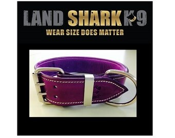 Violet Leather Dog Collar with Soft Purple Suede Inner Lining