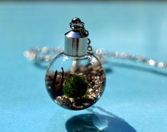 Jurassic Beach Live Marimo Moss Ball Terrarium Necklace // Terrarium Jewelry // 101 % Natural Sand from Florida