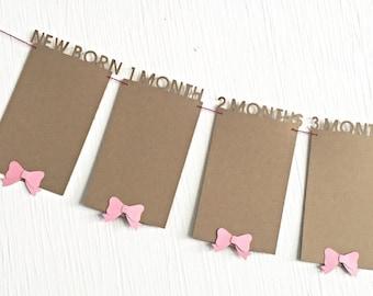 Photo banner 1-12 month photo banner.  12 month photo banner.  Monthly photo banner.   1st birthday banner.  Baby girl first 12 months ban