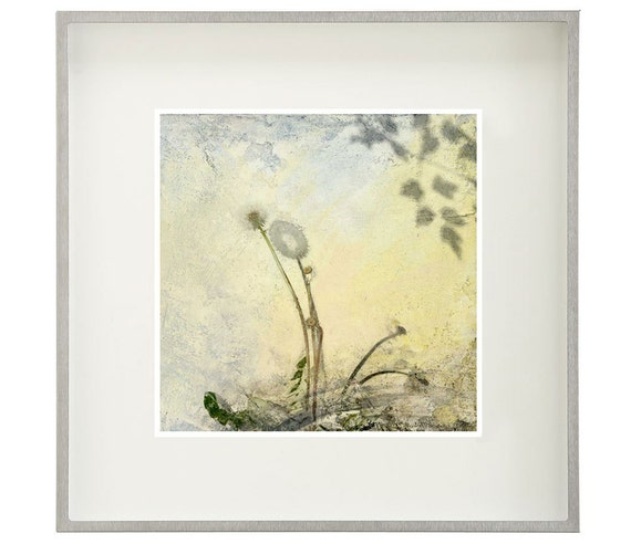Dandelion, homage to durer,botanical print, modern botanical,pale yellow, garden art, limited edition,mixed media print, summer, weeds, lion