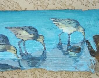 Three shore birds on driftwood