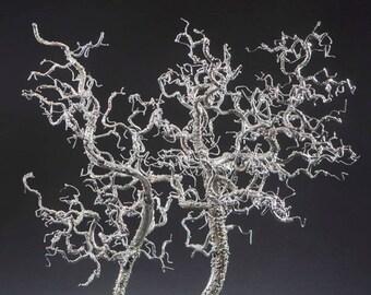 metal tree sculpture, sculpture, metal bonsai, bonsai, sculptured tree,
