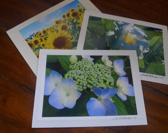 Blank Photo Cards, Assorted Photography Cards Any 4 for 13.99  FREE SHIPPING!!