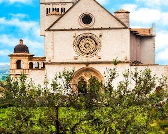 Saint Francis Cathedral, Assisi Italy Photo, Umbria Travel, Olive Trees, Blue Sky, Italy Wall Decor