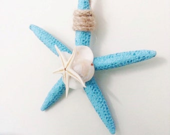 Starfish / Shell Wall hanging