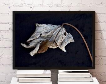 Leaves IV /nature,horizontal,banana leaves,minimalist,stem,tropical plant,leaf