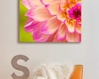Canvas printing | pink and yellow flower on a lime green background macro photography | floral and feminine look