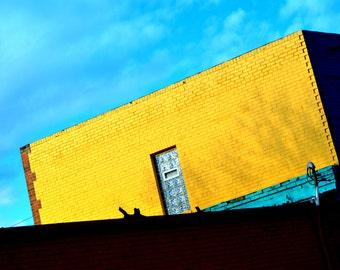 212Photography- Yellow