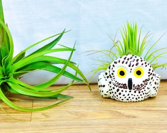 CUSTOM Handmade Owl Planter with Air Plant, Air Plant Holder, Air Plant Terrarium, Clay Owl, Low Shipping, Great Gifts!