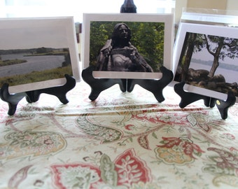 Scenic State Park Greeting Cards