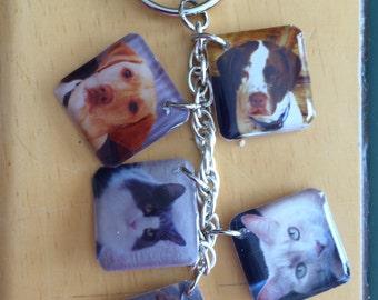 Pets Key Chain