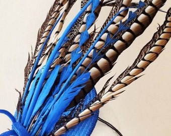 Fascinators and feathers