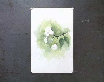 watercolor original painting | cherry blossom