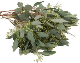Eucalyptus Body Scrub (Himalayan Pink Salt)