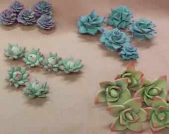 12 - Set of Extra Small Succulents Fondant Cupcake or Cake Toppers