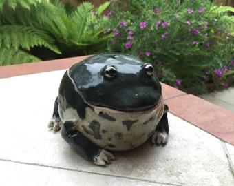 Frog Fatso