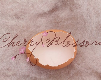 newborn photography, easter eggs overlay, digital background, digital backdrop, commercial use, newborn backdrop, egg overlay, egg backdrop
