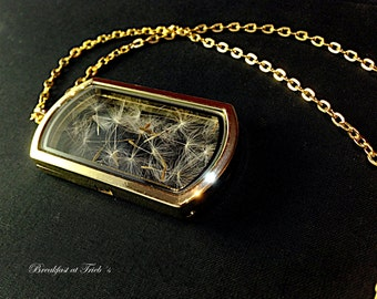 Glass Medallion frame genuine Dandelions seeds gold