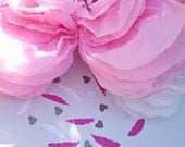 Cardstock confetti feather and hearts glamorous mix paper confetti bridal shower wedding anniversary bachelorette party birthday celebration