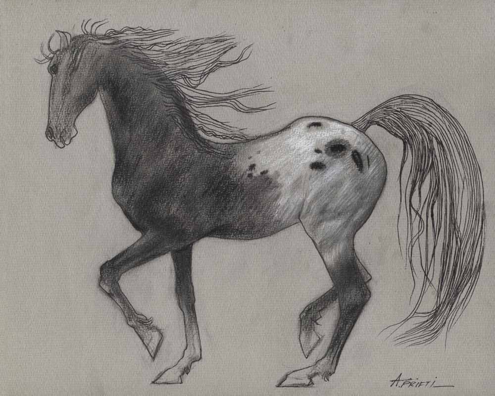 Original horse drawing small pencil drawing for Disegni di cavalli a matita