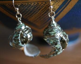 Whelk 14K Gold Fill Earrings