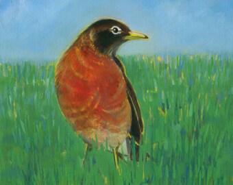 Robin, Original Oil Painting, Bird Art, American Robin Painting, Bright Bird Art