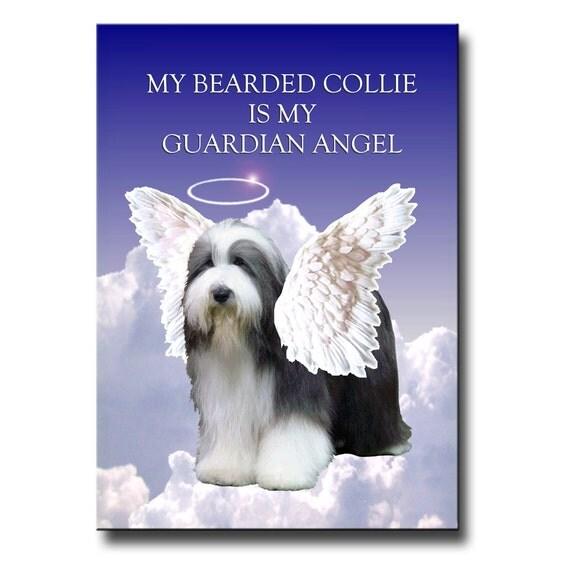 Bearded Collie Guardian Angel Fridge Magnet