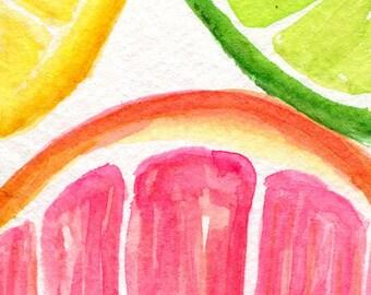 Grapefruit, Lemon, Lime slices Watercolors Paintings Original, Fruit Series, ACEO, Original Art Card original watercolor citrus fruit, lemon