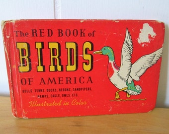vintage red book of birds