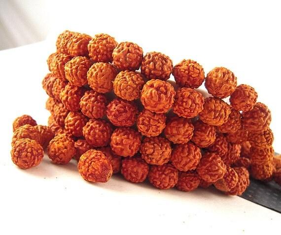 100 Rudraksha Mala Beads, Mala Beads, 8mm, 9mm, Rudraksha Bead, FULL Strand, Rudraksha Seed Beads, Mala Rudraksha WD08