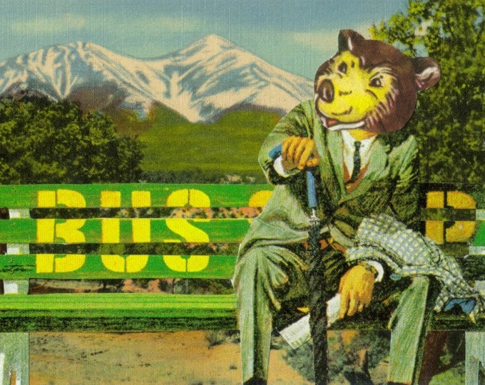 Animal in Suit, Bear in Clothes, Collage Art Postcard