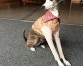 pink chevron COURTNEYCOURTNEY italian greyhound pink dog upcycled jersey knit outfit top