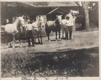 vintage photo 1913 Men Hold White Horse Team Outside Stables