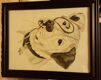 Watercolor Pencil American Pit Bull Terrier Painting or Print