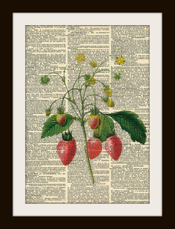Vintage Dictionary art prints STRAWBERRIES 8x10 Dictionary Gold Gilded Page