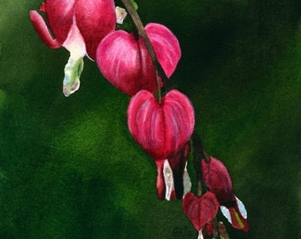 Original Watercolor Painting, Bleeding Hearts, Flower Painting, Realism, Fine Art, Flower, Falling Hearts
