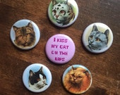 Cat Buttons set of 6