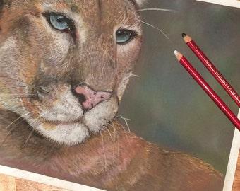 Ready to ship, portrait of puma