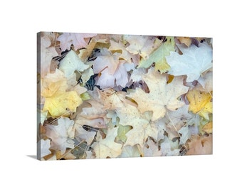 Autumn Art, Fall Leaves, Pastel Art, Nature Photography, Giclee Canvas Print, Wall Art Canvas, Leaf Art, Fall Photography, Forest, Woodlands
