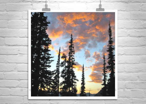 Pacific Northwest Photograph, Washington State, Cascades Mountains, Photo Art, Sunset Picture, Tree Art, Forest Print, Tree Silhouette Art