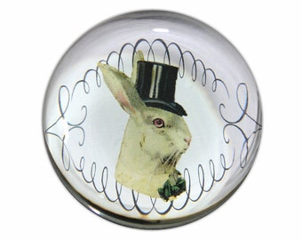 Glass Paperweight with Handsome Rabbit