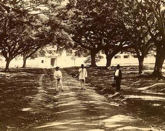 Caribbean Leper Asylum Photo Vintage Black & White