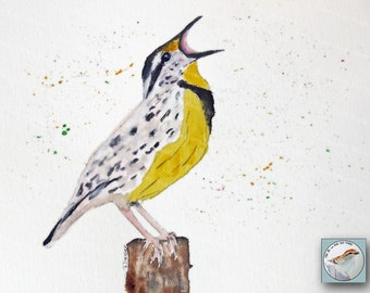 Meadowlark Watercolor Paintings Original Fine Art Songbird Portraits Small Format Art Wall Decor for Bird Lover for 5x7 mat and frame