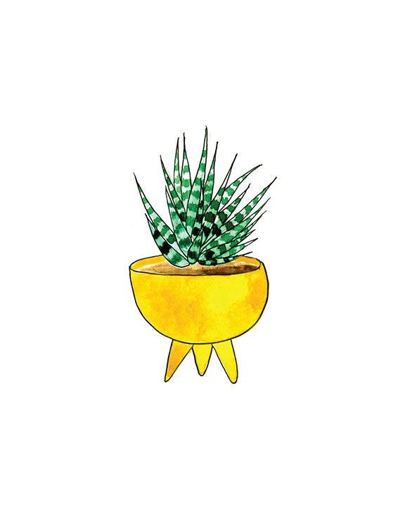 Succulent 1 print